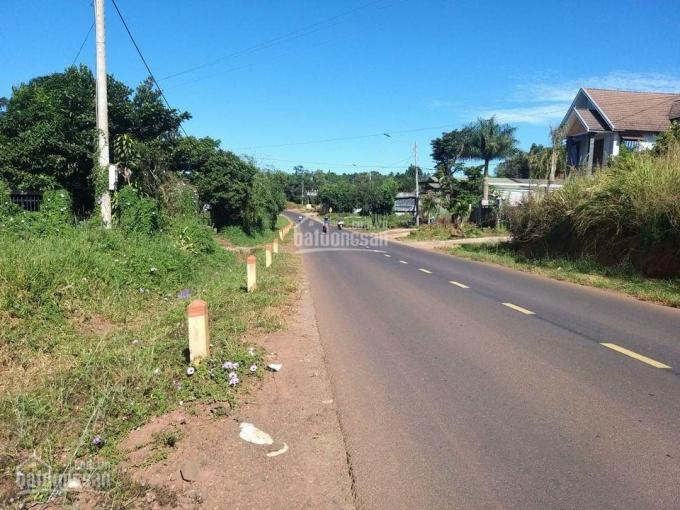 Vợ chồng chuyển về quê bán gấp lô đất ngay An Bình, Phú Giáo, chỉ 600tr/500m2 LH 0931935419 ảnh 0