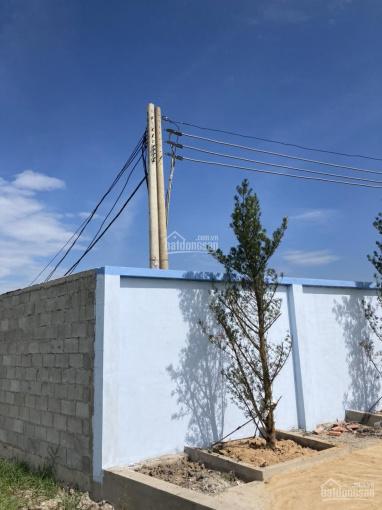 2152m2 KDC có kho tường xây bao quanh. Xe tải vào tận xưởng cách Nguyễn Kim Cương 300m tới đất ảnh 0