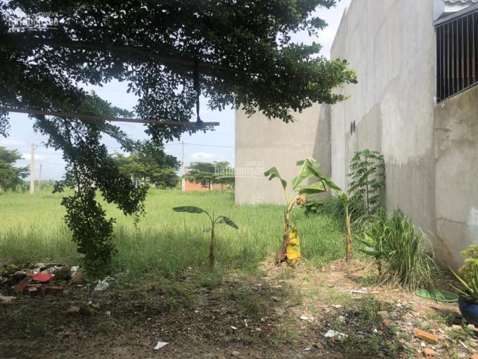 Bán đất Đức Hòa, xã Mỹ Hạnh Long An, đường Tỉnh Lộ 9, diện tích 100m2, sổ hồng riêng. LH 0918551010 ảnh 0