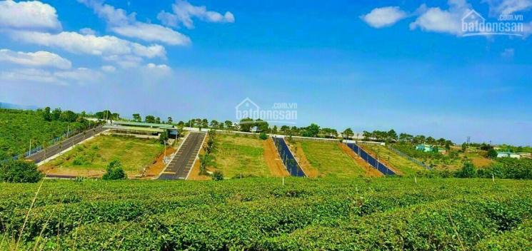 Đất nghỉ dưỡng Bảo Lộc, đầu tư siêu lợi nhuận, view hồ, suối, rừng thông. Giá chỉ từ 5tr/m² thổ cư ảnh 0