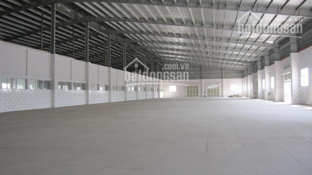 Cho thuê kho 1.000m2 đường Nguyễn Văn Quỳ, Phú Thuận, Quận 7. LH 0903.036.186 ảnh 0