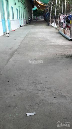Cần bán dãy trọ 18 phòng tại 600m2 sẵn hơn 352m2 TC, Long Thành, Đồng Nai sau công ty TNHH P&F Vina ảnh 0