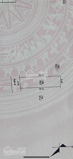 Cần bán lô đất khu 8 Phường Tân Bình, Hải Dương diện tích: 59m2 giá 995tr ảnh 0