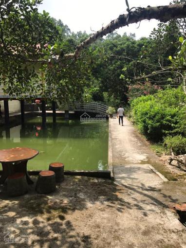 Bán gấp khu nghỉ dưỡng giá giật mình, tại Giáp Lai- Thanh Sơn - Phú Thọ 0969856654