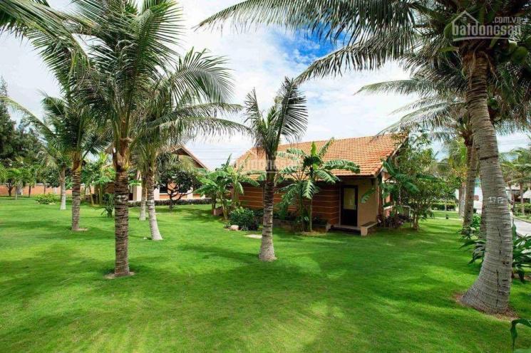 Bán resort 4* tại Mũi Né Bình Thuận ảnh 0