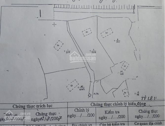 Bán đất 2000m2 ngay Flamingo Đại Lải, 30m mặt tiền đường lớn, view Hồ an sinh đỉnh. LH: 0888180319 ảnh 0