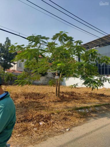 Bán gấp nhà đất gần Nguyễn Thị Định, P. Thạnh Mỹ Lợi, Quận 2 (DT 26x50m, CN 1300m2) giá chỉ 80 tỷ ảnh 0