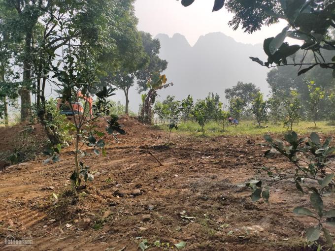 Chính chủ cần bán lô đất tại Liên Sơn Lương Sơn Hòa Bình DT 3176m2 có 400m2 đất TC còn lại là đất ảnh 0
