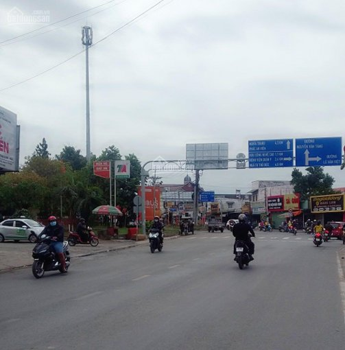 Đất thổ cư Hoàng Hữu Nam, P. Tân Phú, 11x40m, 410m2 thổ, 16.3 tỷ ảnh 0