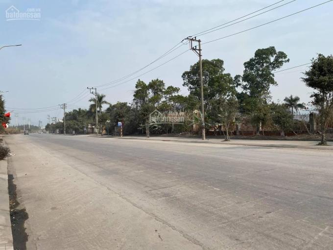 Bán đất trục đường 337 Trần Phú - Thành phố Hạ Long ảnh 0