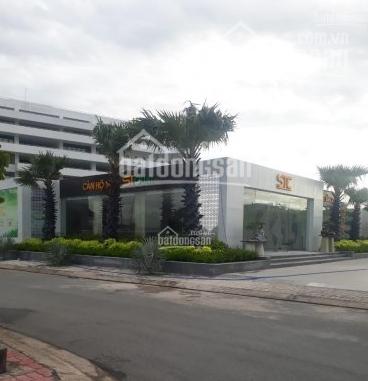 Thanh lý nhanh đất gần UBND Thạnh Xuân, 100m2, giá rẻ TT 1.55 tỷ, sổ chính chủ, XDTD, 0936008798 ảnh 0