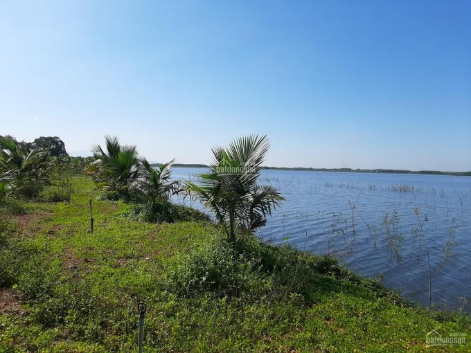 Cần bán 10000m2 view hồ (1 mẫu) Xuân Tâm, Xuân Lộc, Đồng Nai ảnh 0