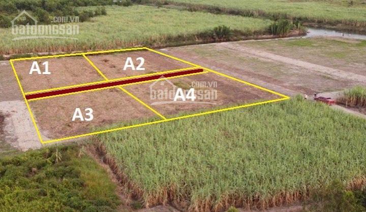Đất cây lâu năm xã Phước Khánh, đường xe hơi gần khu dân cư, giá chỉ 930 nghìn/m2, 0865992269 ảnh 0