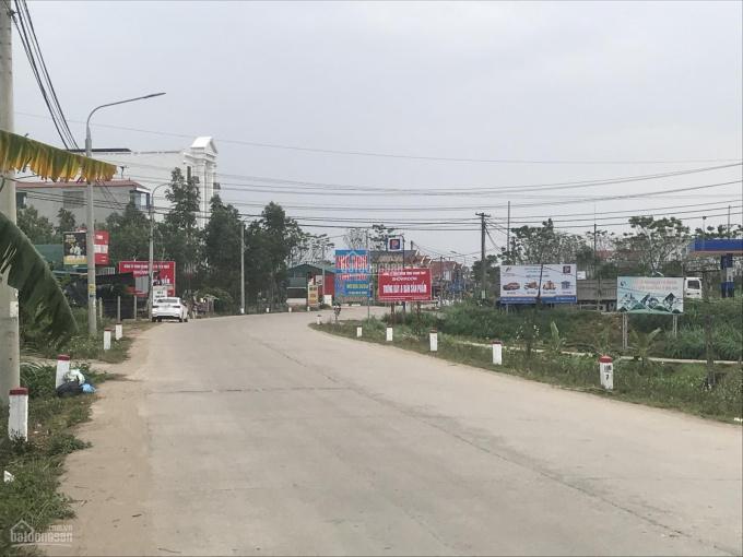 Bán gấp đất mặt đường TL317 Thanh Thủy - Phú Thọ. Liên hệ 0969856654 ảnh 0