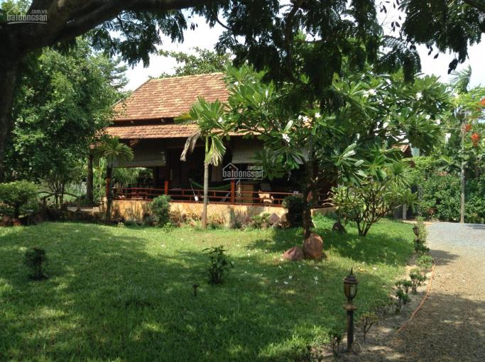 Hot siêu phẩm villa quận 2 3900m2 giá 53tr/m2 còn thương lượng đất mua từ năm 1995. LH: 0948522889 ảnh 0