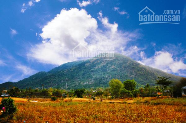 Bán đất mặt tiền đường Hiệp Tiến (đường vành đai núi Chứa Chan), Xuân Hiệp, Xuân Lộc, Đồng Nai ảnh 0