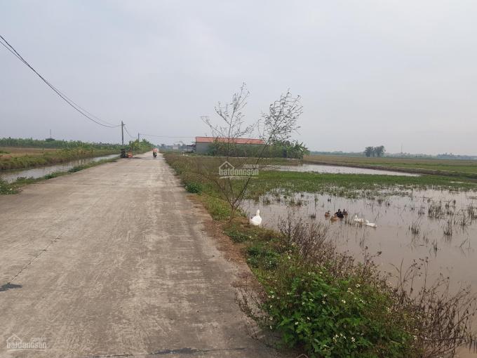 Bán lô góc 2 mặt tiền Khánh Thủy - Yên Khánh - Ninh Bình ảnh 0