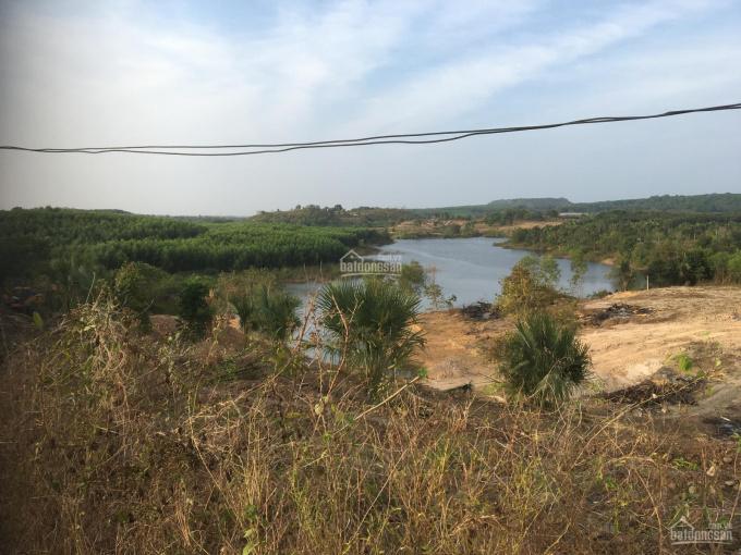 Bán 15.024m2 (300m2 thổ cư) - Đất view hồ Suối Rao - Châu Đức - Bà Rịa Vũng Tàu ảnh 0