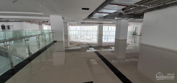 Cho thuê sàn thương mại 35 Lê Văn Thiêm 2600m2, 310.000đ/m2 ảnh 0