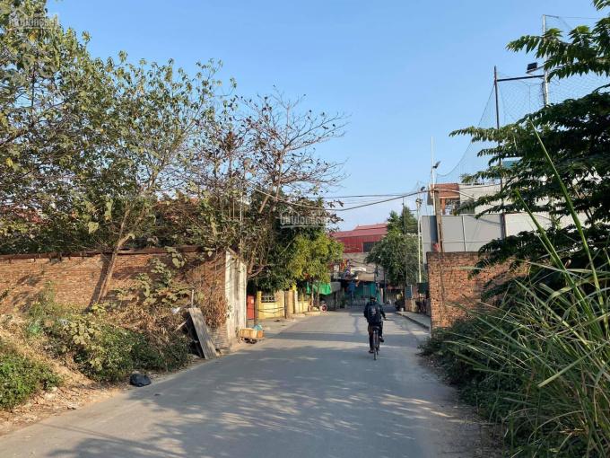 Chuyển nhượng 5.940m2 đất mặt đường Tân Hà - Chân Cầu Niệm I (dự án Chợ Sắt mới)