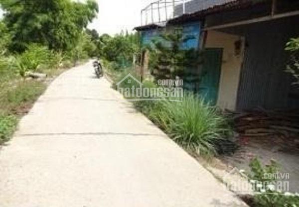 Đất tại vườn cò ấp Phước Chung, xã Mong Thọ B, Châu Thành, Kiên Giang, DT 892.9m2 giá 299 trệu ảnh 0