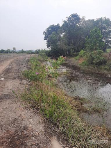 Bán 7220m2 đất LUC Phú An, đường đất 5m, cặp rạch thoáng mát. Cách đường đê bao chỉ 300m ảnh 0