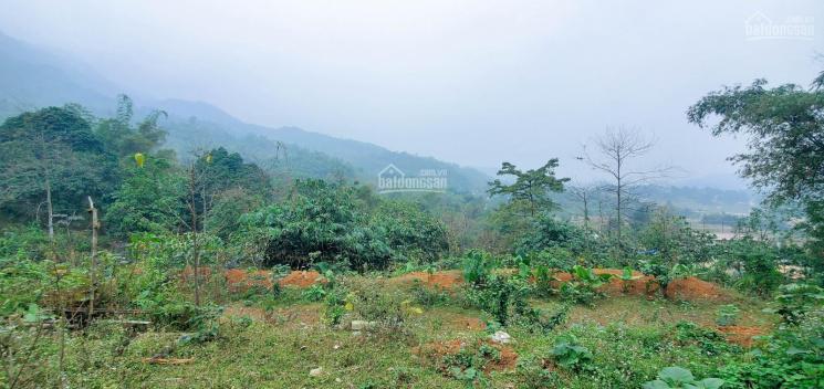 Chỉ 800 triệu/ha bán đất đẹp gần khu công nghiệp Yên Quang ảnh 0