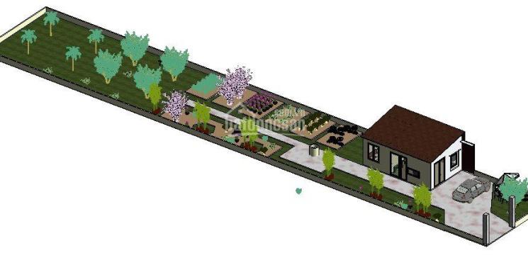 Cho thuê nhà vườn Family Farm - Diên Đồng - Diên Khánh