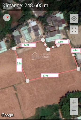 3600m2 đất lúa chuyển thổ full 2 mặt tiền đường xe hơi bao lợi nhuận cao Cần Giuộc ảnh 0