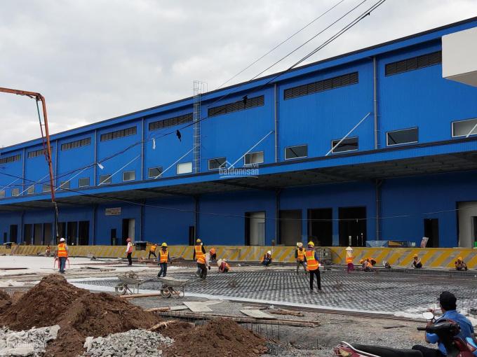 CTY Hoa Phượng bán xưởng, kho, khu công nghiệp Thủ Dầu Một, Bình Dương 1ha; 2ha, 5ha(cả đất trống) ảnh 0