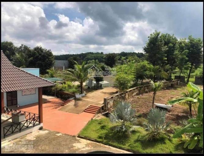Sản phẩm bất động sản phù hợp kinh doanh quán nhậu sân vườn, homestay nghỉ dưỡng ảnh 0