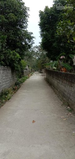 Bán đất thổ cư tại Xã Lâm Sơn, Huyện Lương Sơn, Tỉnh Hòa Bình ảnh 0