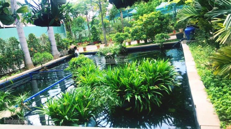 Nhà vườn nghỉ dưỡng An Sơn 2369m2, giá 15 tỷ, liên hệ 0878 048 048 ảnh 0