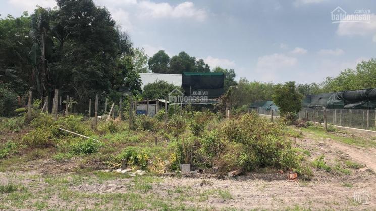 Bán miếng đất tổng diện tích 3.800m2 ở phường Lộc Hưng, thị xã Trảng Bàng ảnh 0
