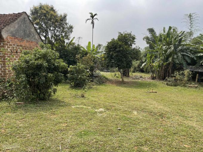 Bán 7ha đất nghỉ dưỡng Vân Hoà. Giá chỉ vài trăm nghìn một mét