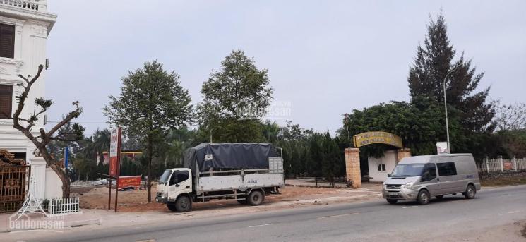 Chính chủ cần bán đất (lô góc) ven biển tại khu du lịch biển Diễn Thành, huyện Diễn Châu, Nghệ An ảnh 0