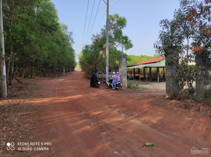 Xưởng đã cấp giấy phép, cần bán xưởng cũ diện tích 8000m2, đường xe công tại xã Vĩnh Tân, Vĩnh Cửu