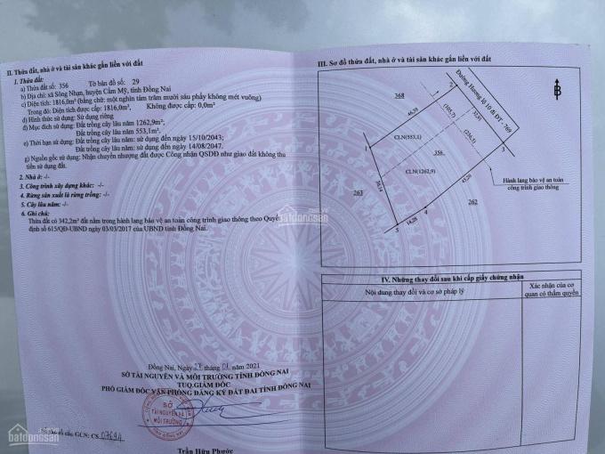 Cần Bán Gấp Đất MT sân Bay Long Thành, H. Cẩm Mỹ, DT 1816m2. SĐCC, LH: 0908776678 ảnh 0