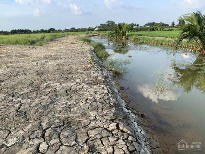 Tôi bán lô đất thổ vườn (CLN) Phước Khánh Nhơn Trạch đường ô tô, mặt rạch, có dân cư 1000m2, 1,2 tỷ ảnh 0