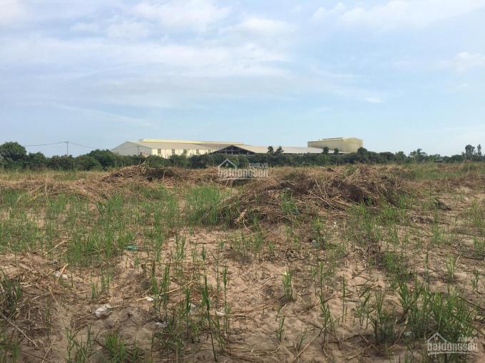 Bán 21,467 m2 đất trong cụm công nghiệp tại Mỹ Hiệp, Cao Lãnh, Đồng Tháp ảnh 0