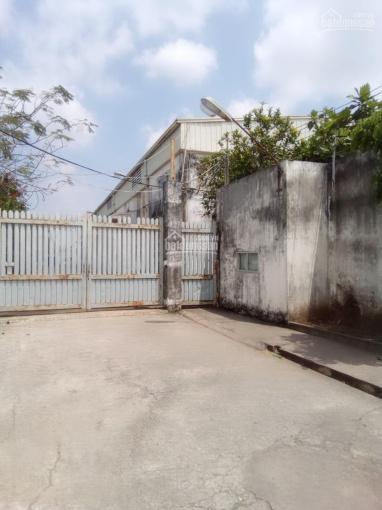 Bán nhà xưởng 9000m2 đất SXKD MT đường xe công QL 50 xã Thuận Thành Cần Giuộc LA. Giá 50tỷ TL