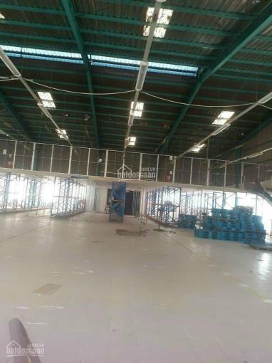 Cho thuê xưởng 12000m2 Thuận An Bình Dương