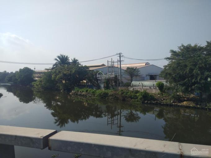 Cho thuê kho xưởng 8000m2, giá 420 triệu đường Thế Lữ, xã Tân Nhựt, huyện Bình Chánh, TPHCM