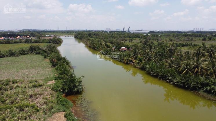 Bán đất Phước Khánh, 1 mặt sông lớn và 1 mặt đường ô tô, khu dân cư, ngay đường Phạm Thái Bường ảnh 0