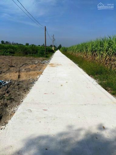 Đất vườn CLN Phước Khánh, Vĩnh Thanh, đường ô tô khu dân cư mặt rạch lớn thoáng mát ảnh 0