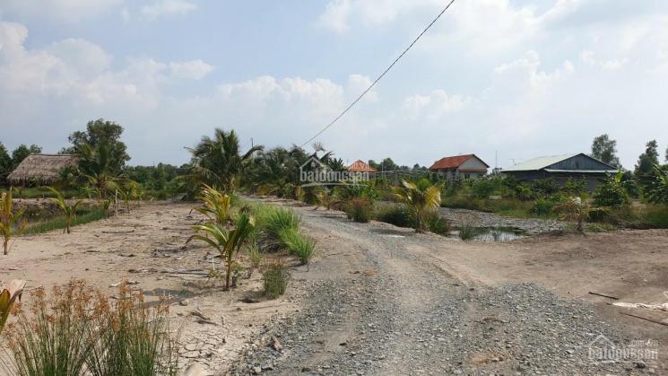Nhà vườn Phạm Thái Bường, Phước Khánh, khu dân cư đường ô tô bao xây nhà cấp 4, giá 1,55tr/m2 ảnh 0