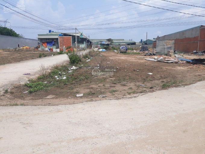 Bán gấp đất MT Thuận Giao 21, Thuận An BD gần trường TH Đức Trí, 100m2 SHR 0909661095 Hòa ảnh 0