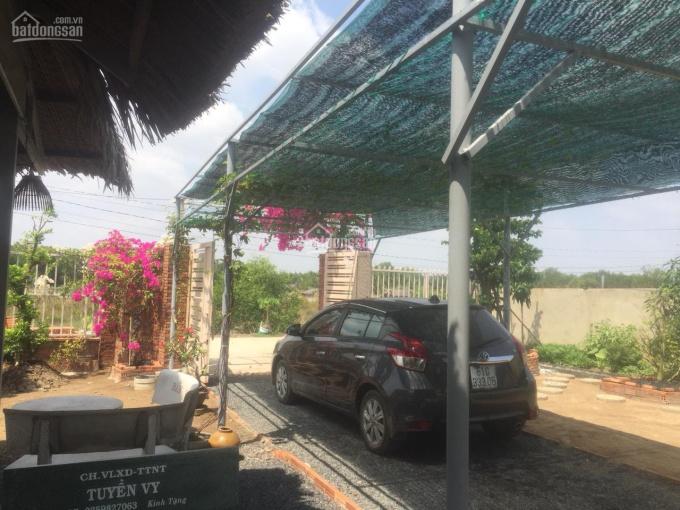 Nhà vườn 1700m2 trên trục đường 826C - Phước Vĩnh Tây - sẵn vườn cây, ao cá, đường xe hơi: 3,4 tỷ ảnh 0