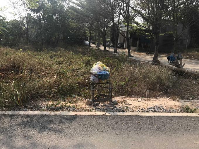 Đất ngay Ngã Ba Lăn Xi, Thới Hoà, Bến Cát cách Quốc Lộ 13 400m đường nhựa nhà nước dân đông kín ảnh 0