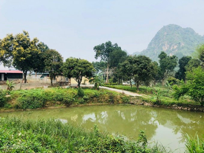 Bán Gấp khu đất Lương Sơn làm Nghỉ Dưỡng cực đỉnh 16000m2 400m thổ có ao to vui núi đường 8m giá rẻ